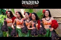deadhead-rum-show-us-your-head-2015-27