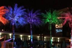 deadhead-rum-hotel-valley-ho-palms-tiki-oasis-arizona-10