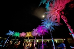 deadhead-rum-hotel-valley-ho-palms-tiki-oasis-arizona